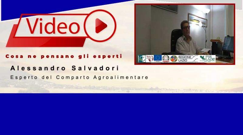 Alessandro Salvadori | Esperto del comparto agroalimentare